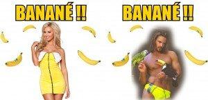 banane-2015 copie